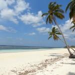 S'évader à travers les merveilles naturelles de Sulawesi