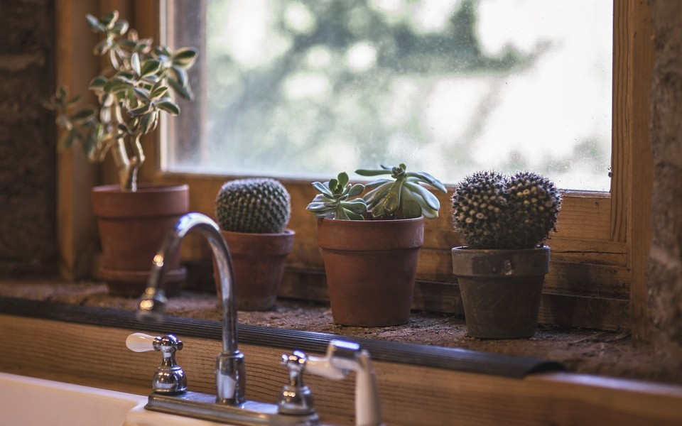 Ménage et entretien de la maison : la révolution du service à la personne