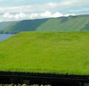 Tout savoir sur la toiture verte