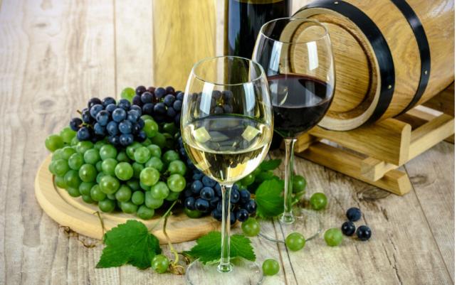 Tout savoir sur le vin bio et la biodynamie